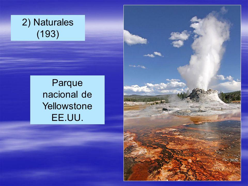 Parque nacional de Yellowstone EE.UU. 2) Naturales (193)