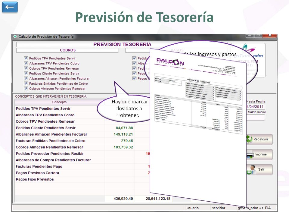 Previsión de Tesorería Hay que marcar los datos a obtener.