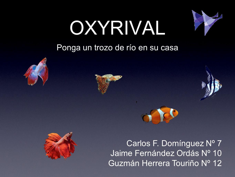 OXYRIVAL Ponga un trozo de río en su casa Carlos F. Domínguez Nº 7 Jaime Fernández Ordás Nº 10 Guzmán Herrera Touriño Nº 12