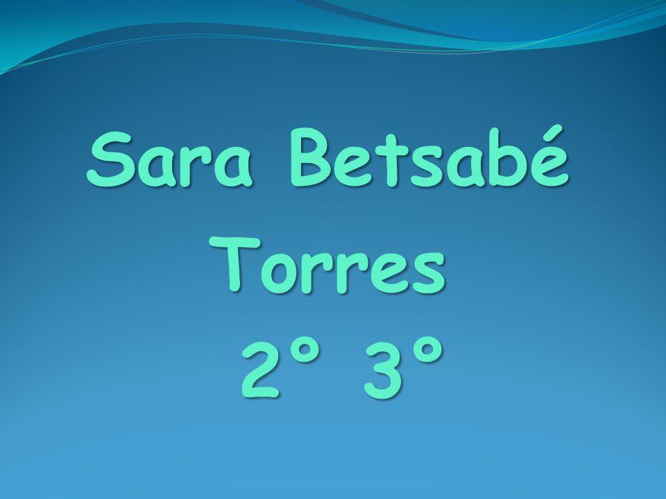 Sara Betsabé Torres 2° 3° 2° 3°