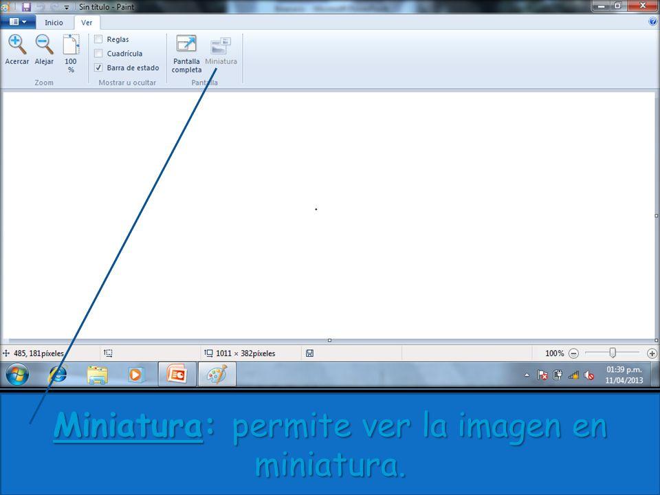 Miniatura: permite ver la imagen en miniatura.