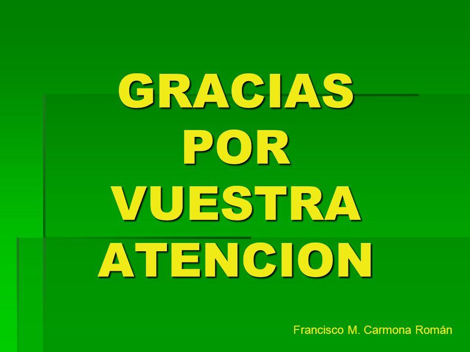 GRACIAS POR VUESTRA ATENCION Francisco M. Carmona Román