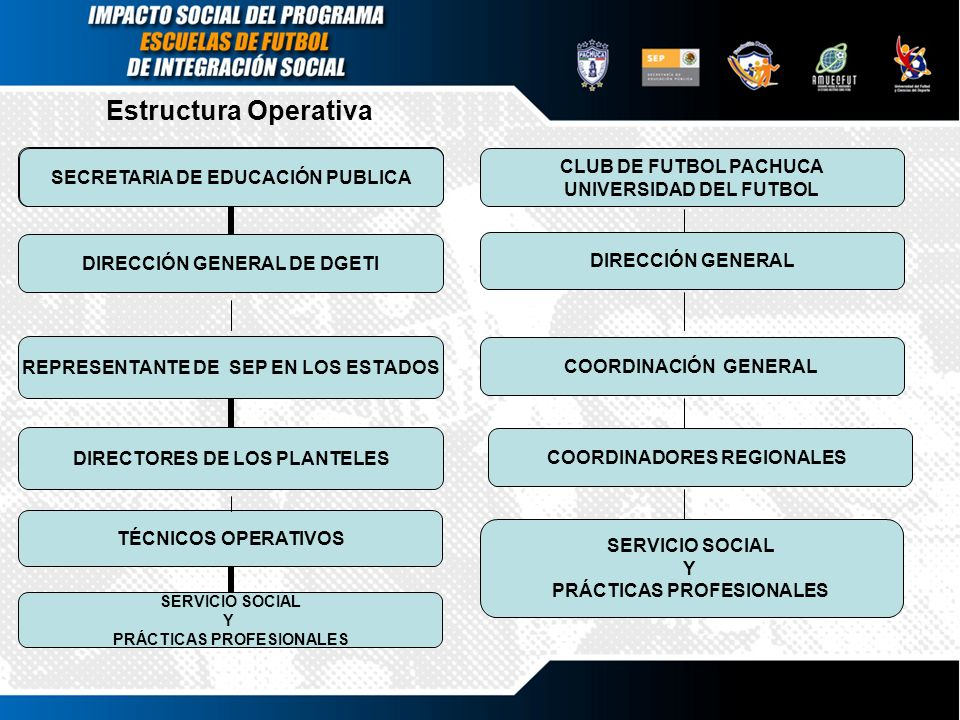 Estructura Operativa TÉCNICOS OPERATIVOS SERVICIO SOCIAL Y PRÁCTICAS PROFESIONALES SECRETARIA DE EDUCACIÓN PUBLICA DIRECCIÓN GENERAL DE DGETI REPRESEN