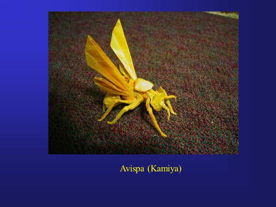Avispa (Kamiya)