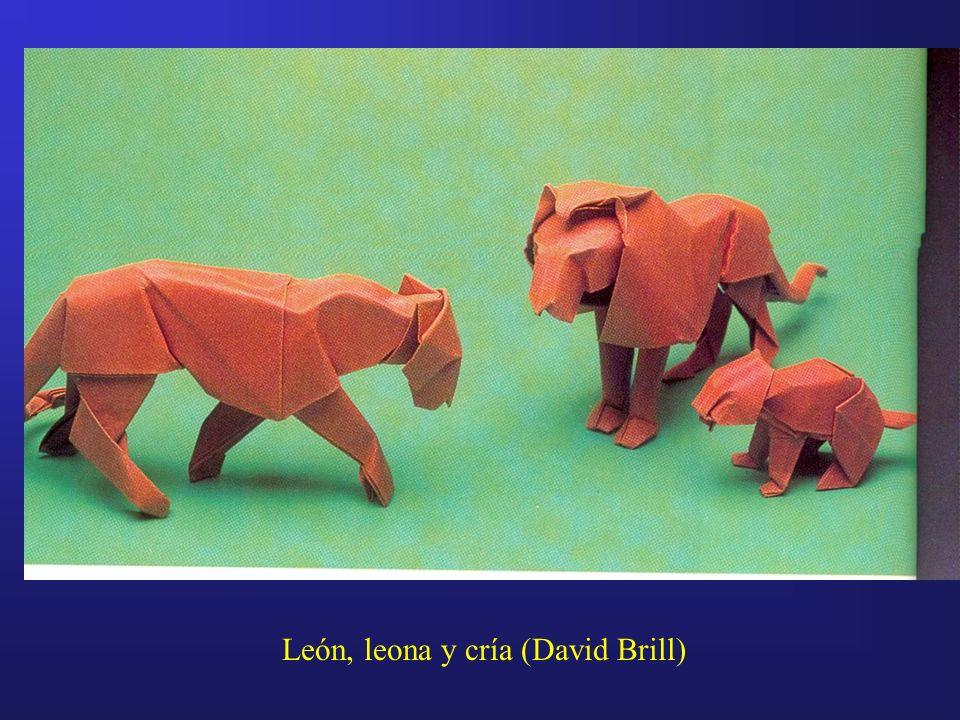 León, leona y cría (David Brill)