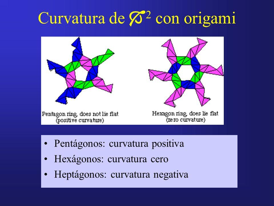 Curvatura de 2 con origami Pentágonos: curvatura positiva Hexágonos: curvatura cero Heptágonos: curvatura negativa