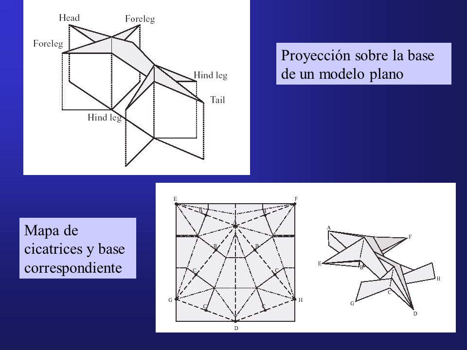 Proyección sobre la base de un modelo plano Mapa de cicatrices y base correspondiente