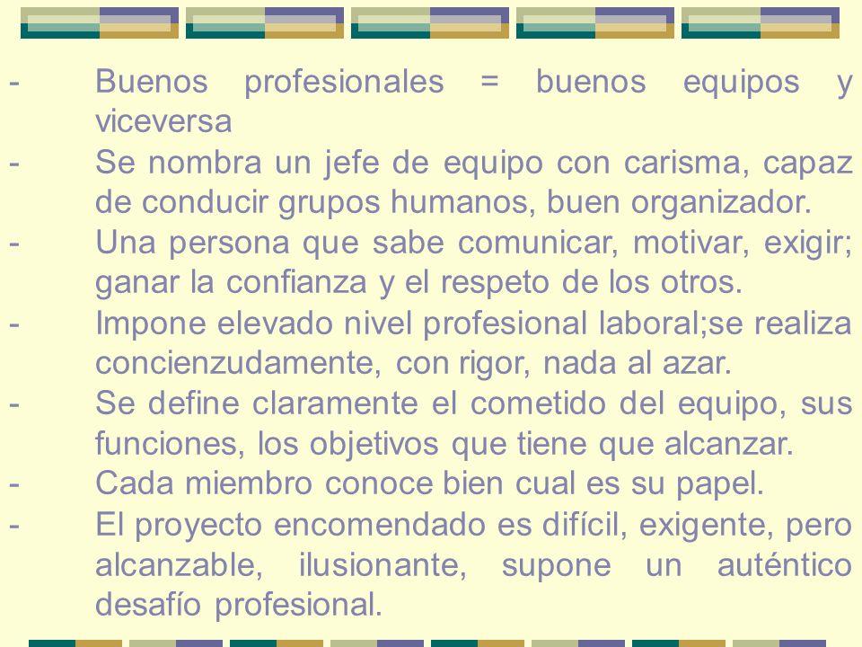 -Buenos profesionales = buenos equipos y viceversa - Se nombra un jefe de equipo con carisma, capaz de conducir grupos humanos, buen organizador.