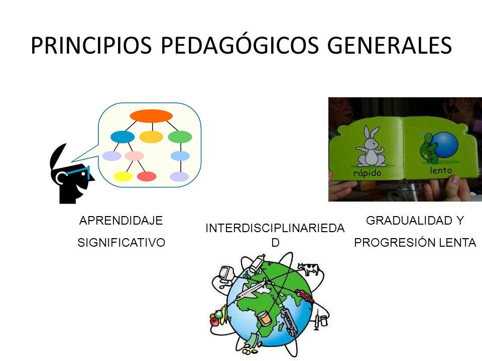 PRINCIPIOS PEDAGÓGICOS GENERALES APRENDIDAJE SIGNIFICATIVO GRADUALIDAD Y PROGRESIÓN LENTA INTERDISCIPLINARIEDA D