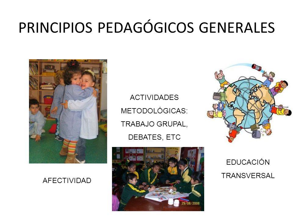 PRINCIPIOS PEDAGÓGICOS GENERALES AFECTIVIDAD ACTIVIDADES METODOLÓGICAS: TRABAJO GRUPAL, DEBATES, ETC EDUCACIÓN TRANSVERSAL