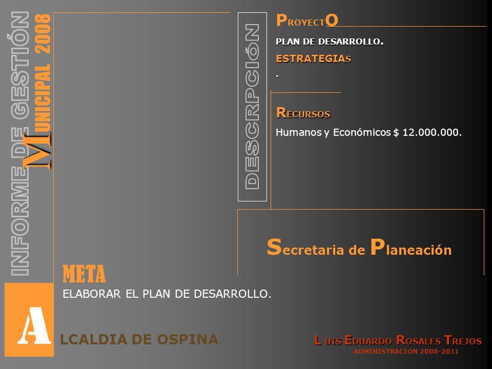 P ROYECT O PLAN DE DESARROLLO. ESTRATEGIA S. R ECURSOS Humanos y Económicos $ 12.000.000.