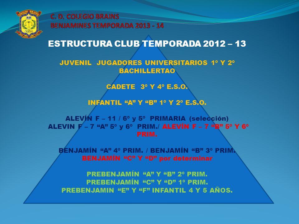 ESTRUCTURA CLUB TEMPORADA 2012 – 13 JUVENIL JUGADORES UNIVERSITARIOS 1º Y 2º BACHILLERTAO CADETE 3º Y 4º E.S.O. INFANTIL A Y B 1º Y 2º E.S.O. ALEVÍN F