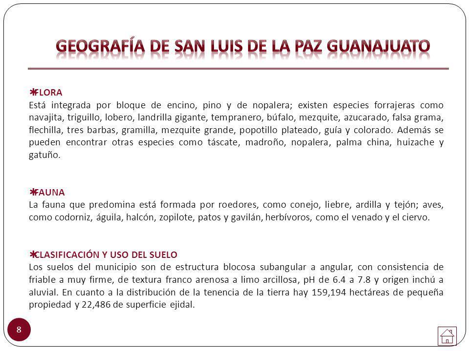 19 20.M EDIDAS R EGLAMENTARIAS E N U NA C ANCHA D E FUTBOL RÁPIDO (CONADE 2008).