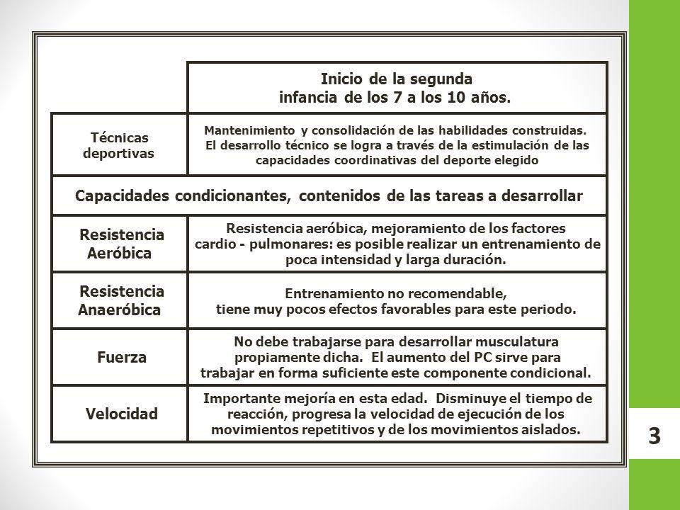 14 Contenidos por categoría CategoríaEdadContenidos 2003 2004 9-10 años Táctica.