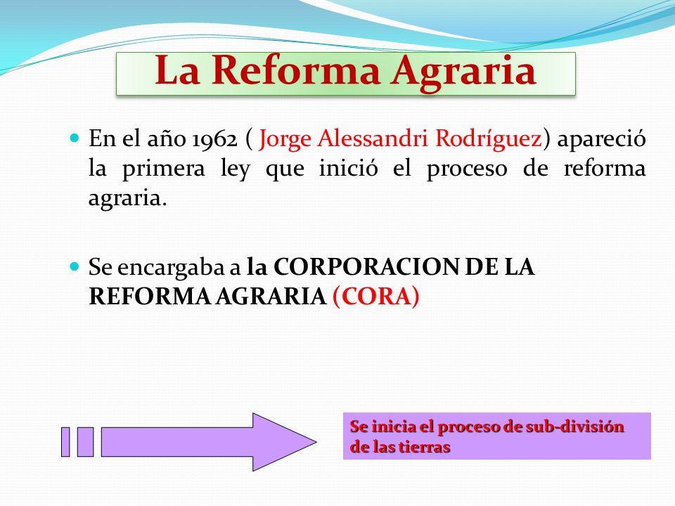 La Reforma Agraria En el año 1962 ( Jorge Alessandri Rodríguez) apareció la primera ley que inició el proceso de reforma agraria. Se encargaba a la CO