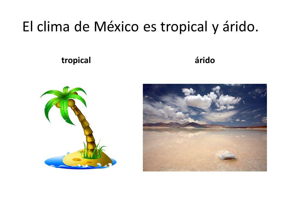 El clima de México es tropical y árido. tropicalárido