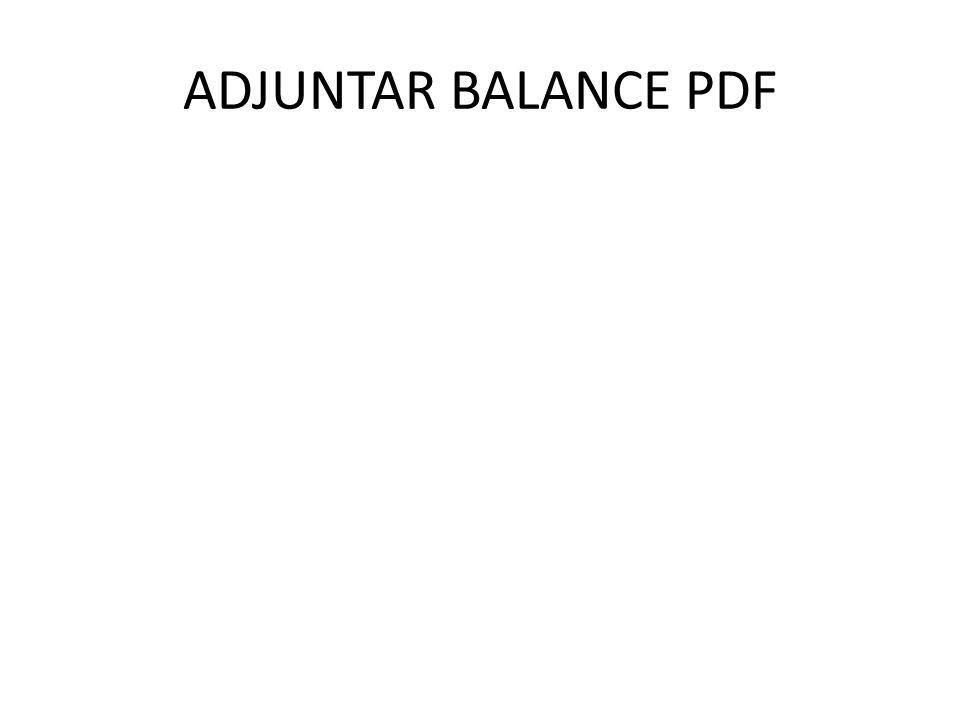 ADJUNTAR BALANCE PDF