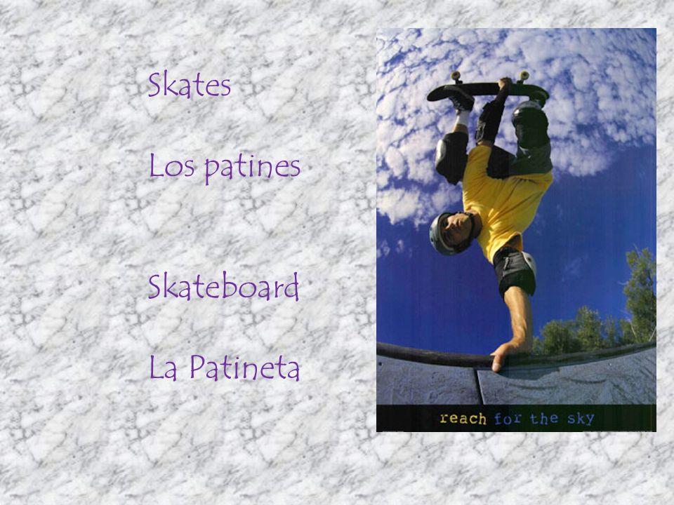 Skates Los patines Skateboard La Patineta