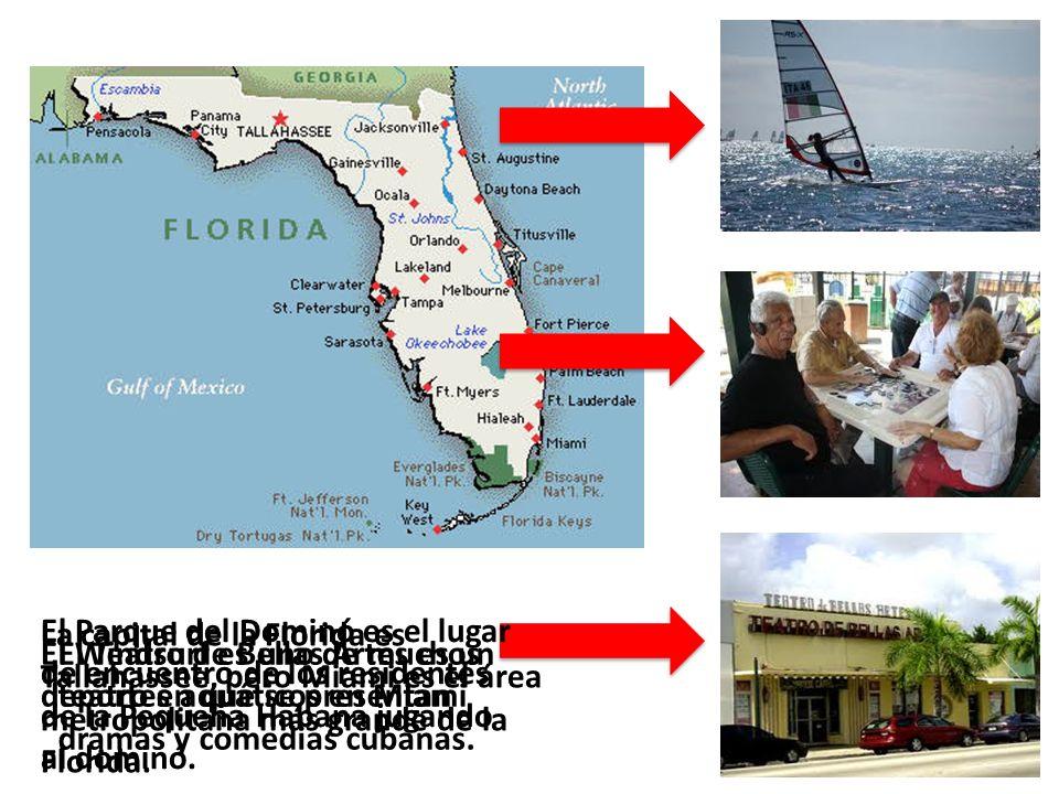 La capital de la Florida es Tallahassee, pero Miami es el área metropolitana más grande de la Florida. El Windsurf es uno de muchos deportes aquáticos