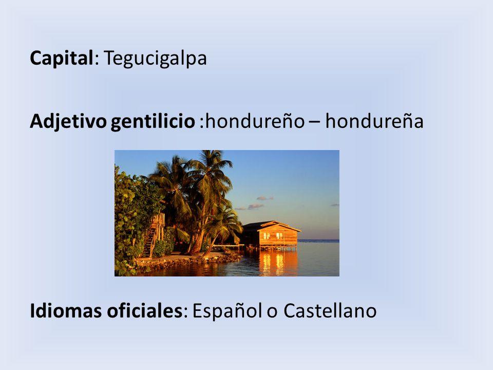 Limita al norte con el mar Caribe, donde posee numerosas islas,de las cuales las más importantes son las islas de la Bahía y las islas del Cisne, al sur y al este con Nicaragua, al suroeste con el océano Pacífico y El Salvador, y al oeste con Guatemala.