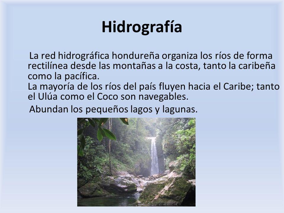 Hidrografía La red hidrográfica hondureña organiza los ríos de forma rectilínea desde las montañas a la costa, tanto la caribeña como la pacífica. La
