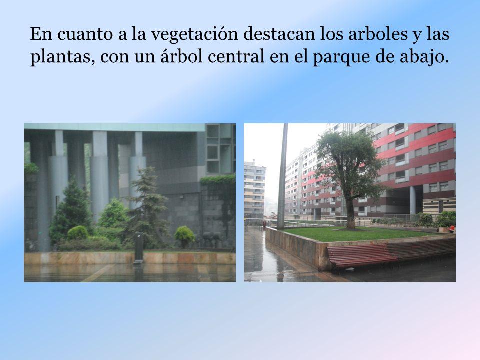 En cuanto a la vegetación destacan los arboles y las plantas, con un árbol central en el parque de abajo.