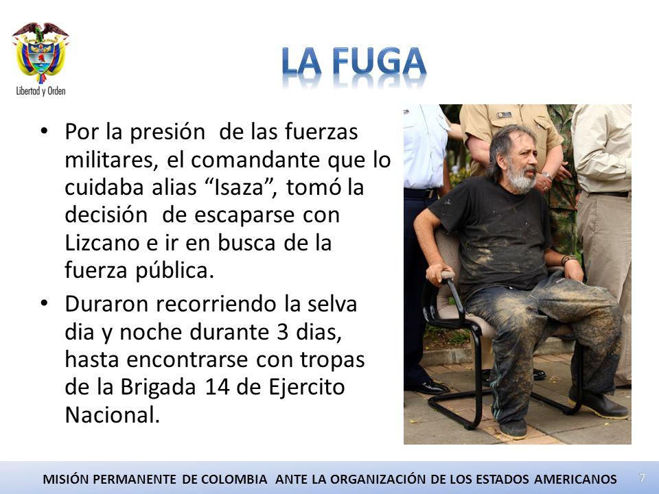 MISIÓN PERMANENTE DE COLOMBIA ANTE LA ORGANIZACIÓN DE LOS ESTADOS AMERICANOS Por la presión de las fuerzas militares, el comandante que lo cuidaba alias Isaza, tomó la decisión de escaparse con Lizcano e ir en busca de la fuerza pública.
