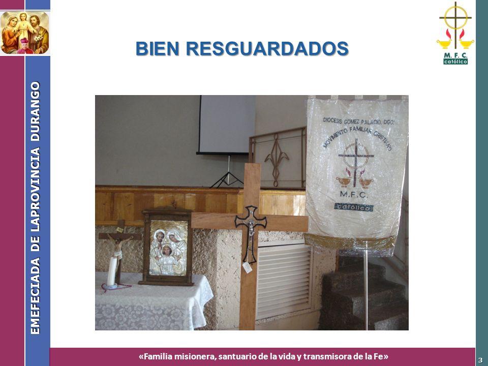 «Familia misionera, santuario de la vida y transmisora de la Fe» EMEFECIADA DE LAPROVINCIA DURANGO 3 BIEN RESGUARDADOS