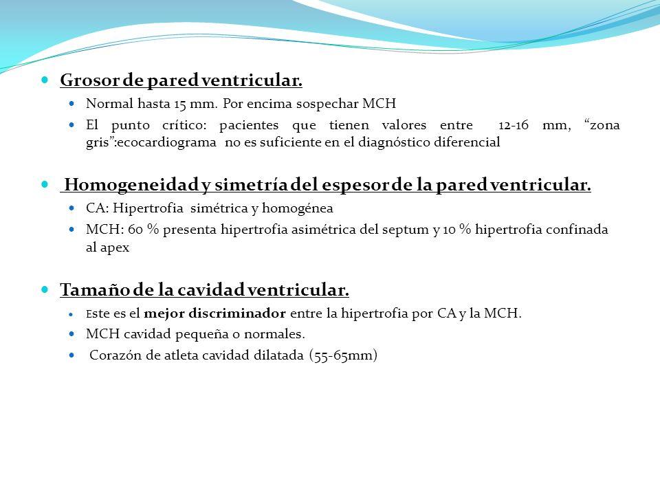 Grosor de pared ventricular. Normal hasta 15 mm. Por encima sospechar MCH El punto crítico: pacientes que tienen valores entre 12-16 mm, zona gris:eco