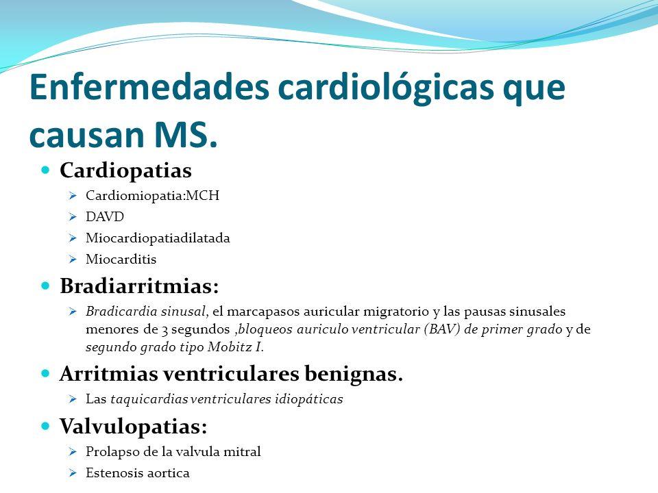Enfermedades cardiológicas que causan MS. Cardiopatias Cardiomiopatia:MCH DAVD Miocardiopatiadilatada Miocarditis Bradiarritmias: Bradicardia sinusal,