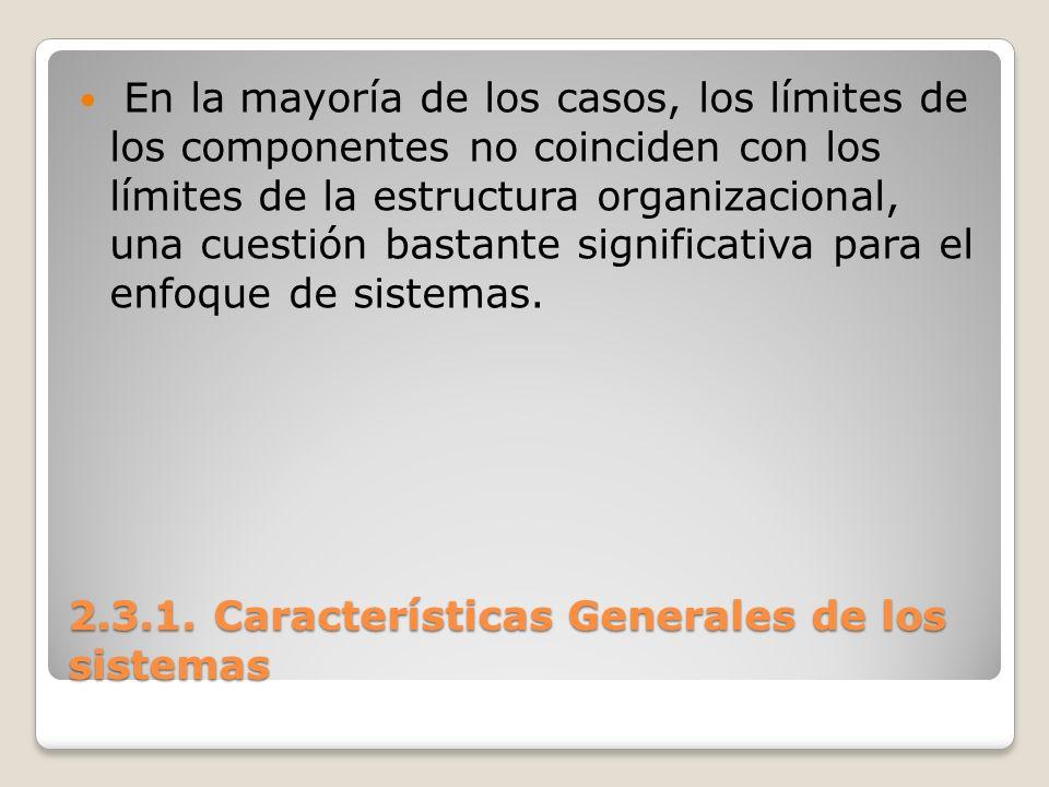 2.3.1. Características Generales de los sistemas En la mayoría de los casos, los límites de los componentes no coinciden con los límites de la estruct