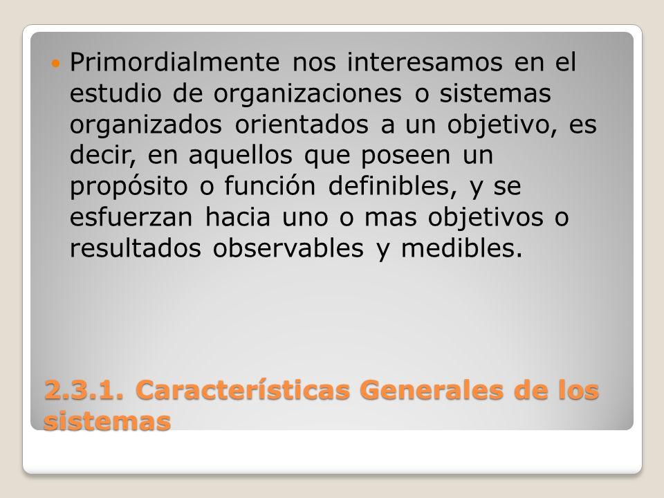 2.3.1. Características Generales de los sistemas Primordialmente nos interesamos en el estudio de organizaciones o sistemas organizados orientados a u