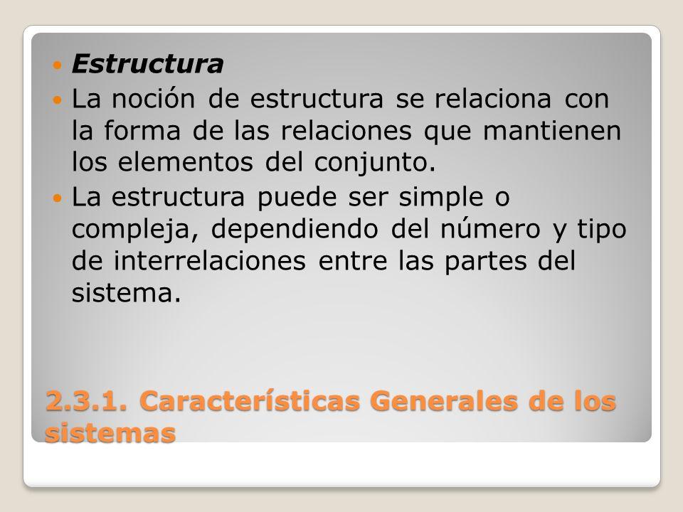 2.3.1. Características Generales de los sistemas Estructura La noción de estructura se relaciona con la forma de las relaciones que mantienen los elem