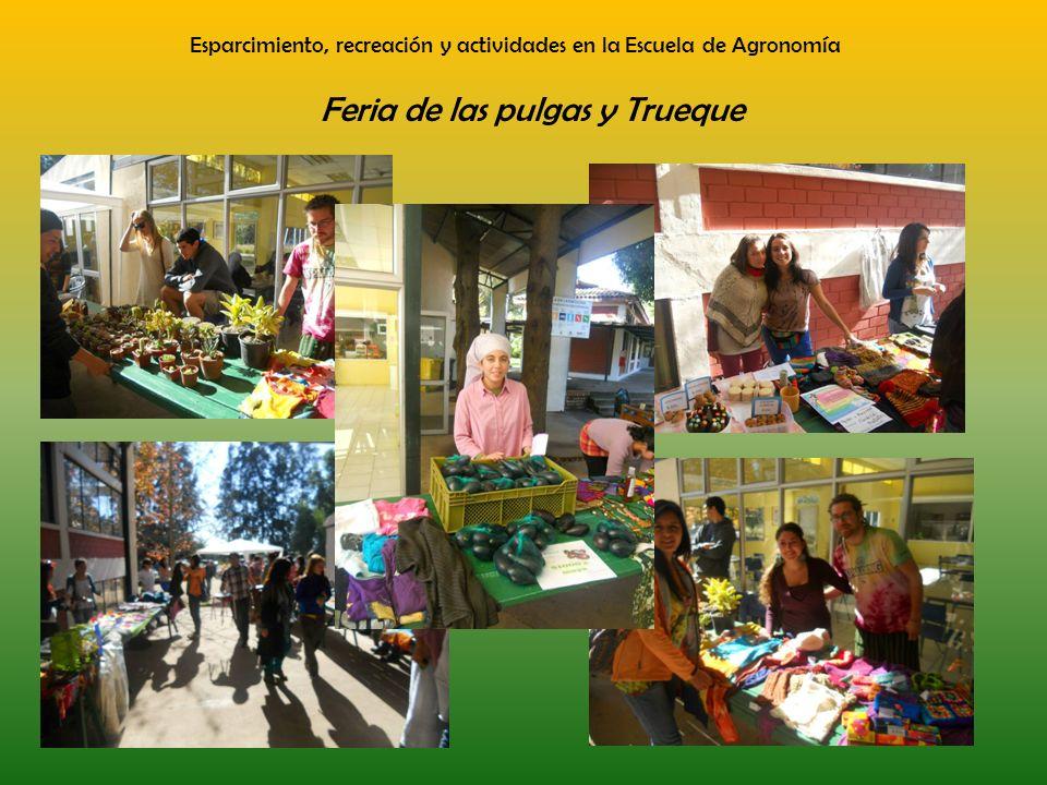 Esparcimiento, recreación y actividades en la Escuela de Agronomía Feria de las pulgas y Trueque