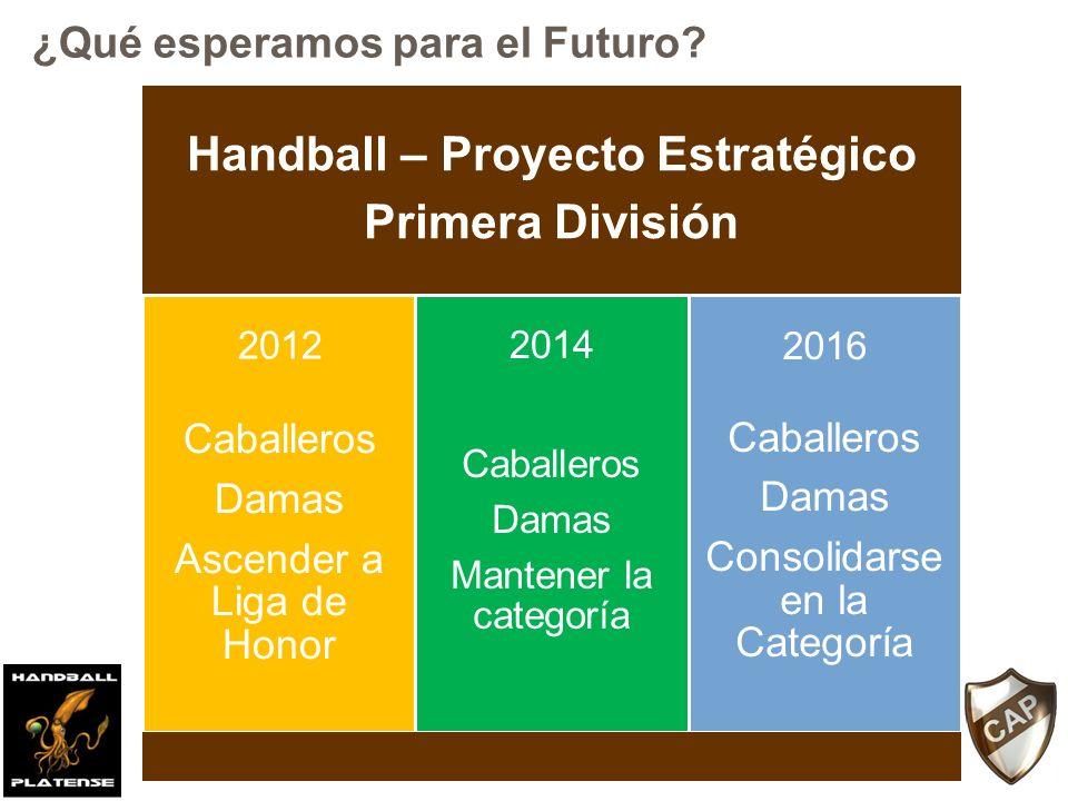 Handball – Proyecto Estratégico Primera División Caballeros Damas Ascender a Liga de Honor Caballeros Damas Mantener la categoría Caballeros Damas Consolidarse en la Categoría 2012 2014 2016 ¿Qué esperamos para el Futuro?