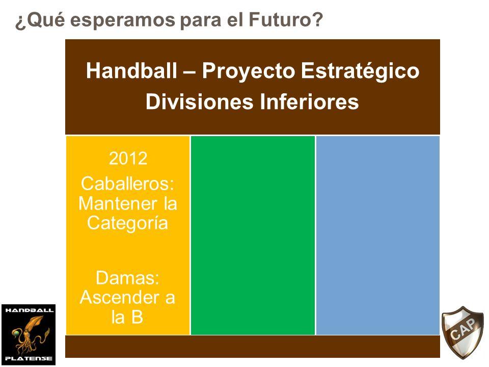 Handball – Proyecto Estratégico Divisiones Inferiores Caballeros: Mantener la Categoría Damas: Ascender a la B Caballeros: Ascender a la división A Damas: Consolidarse en la B 2012 2014 ¿Qué esperamos para el Futuro?