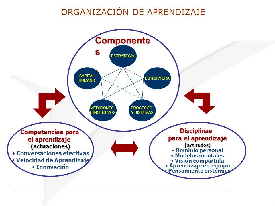 ORGANIZACIÓN DE APRENDIZAJE Componente s Disciplinas para el aprendizaje ( actitudes) Dominio personal Modelos mentales Visión compartida Aprendizaje en equipo Pensamiento sistémico ESTRATEGIA CAPITAL HUMANO ESTRUCTURA MEDICIONES E INCENTIVOS PROCESOS Y SISTEMAS Competencias para el aprendizaje (actuaciones) Conversaciones efectivas Velocidad de Aprendizaje Innovación