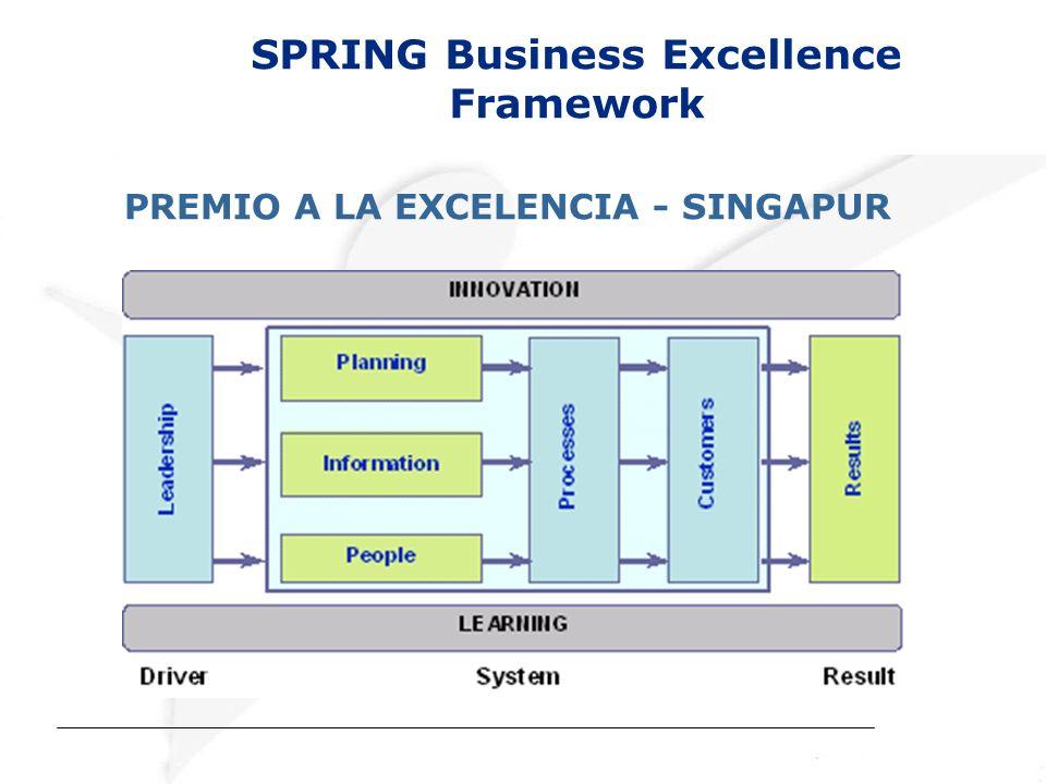 SPRING Business Excellence Framework PREMIO A LA EXCELENCIA - SINGAPUR