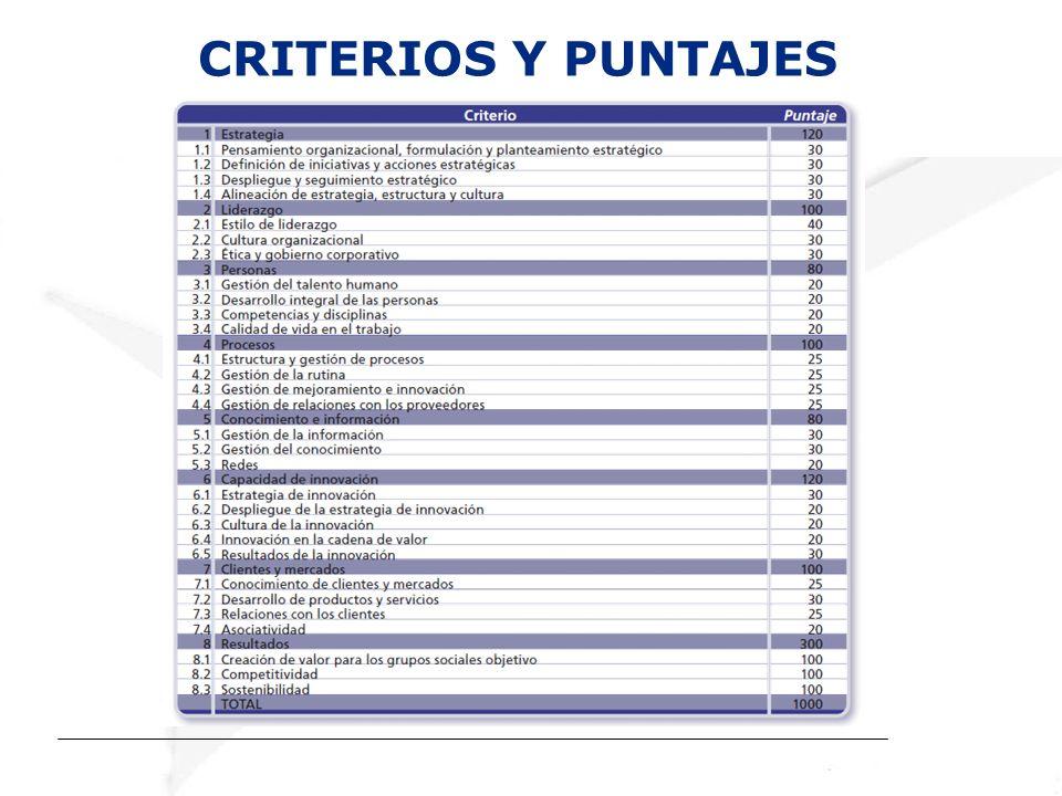 CRITERIOS Y PUNTAJES