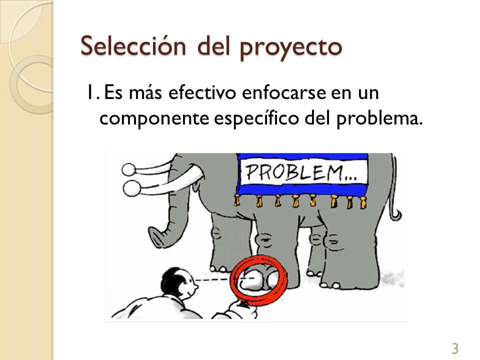 Selección del proyecto 2. Razón de la selección – Matriz de priorización 4