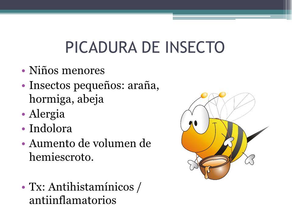 PICADURA DE INSECTO Niños menores Insectos pequeños: araña, hormiga, abeja Alergia Indolora Aumento de volumen de hemiescroto. Tx: Antihistamínicos /