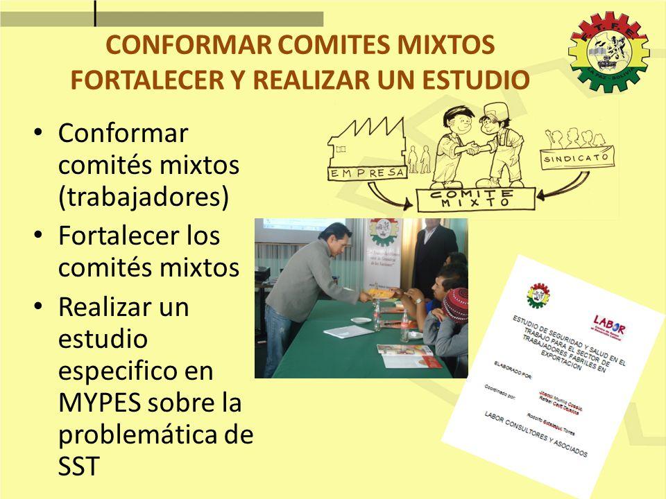 CONFORMAR COMITES MIXTOS FORTALECER Y REALIZAR UN ESTUDIO Conformar comités mixtos (trabajadores) Fortalecer los comités mixtos Realizar un estudio es