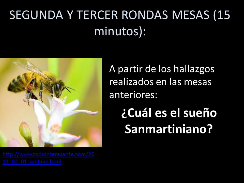 SEGUNDA Y TERCER RONDAS MESAS (15 minutos): A partir de los hallazgos realizados en las mesas anteriores: ¿Cuál es el sueño Sanmartiniano? http://www.
