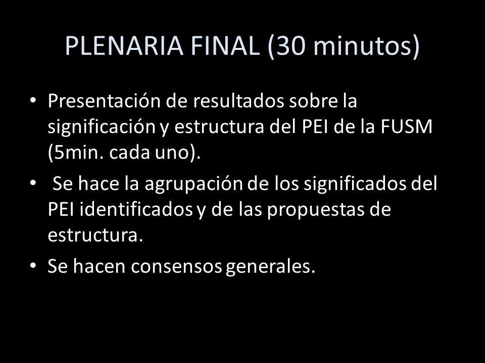 PLENARIA FINAL (30 minutos) Presentación de resultados sobre la significación y estructura del PEI de la FUSM (5min. cada uno). Se hace la agrupación