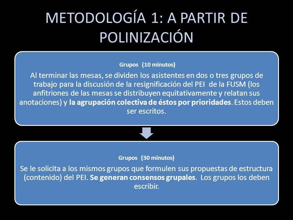 METODOLOGÍA 1: A PARTIR DE POLINIZACIÓN Plenaria (30 minutos) Cada grupo presenta sus resultados sobre la significación y estructura del PEI de la FUSM ( 5min.