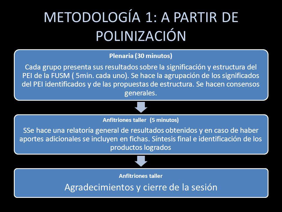 METODOLOGÍA 1: A PARTIR DE POLINIZACIÓN Plenaria (30 minutos) Cada grupo presenta sus resultados sobre la significación y estructura del PEI de la FUS