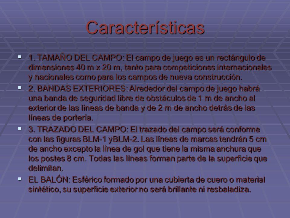 Características 1. TAMAÑO DEL CAMPO: El campo de juego es un rectángulo de dimensiones 40 m x 20 m, tanto para competiciones internacionales y naciona