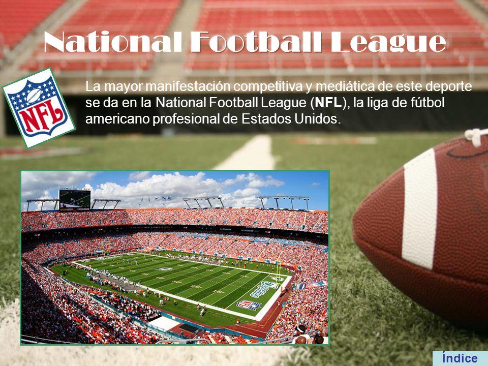 La mayor manifestación competitiva y mediática de este deporte se da en la National Football League (NFL), la liga de fútbol americano profesional de