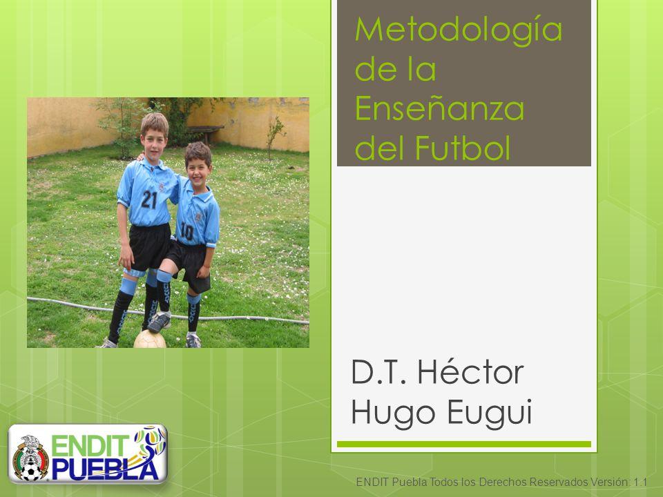 Metodología de la Enseñanza del Futbol D.T.