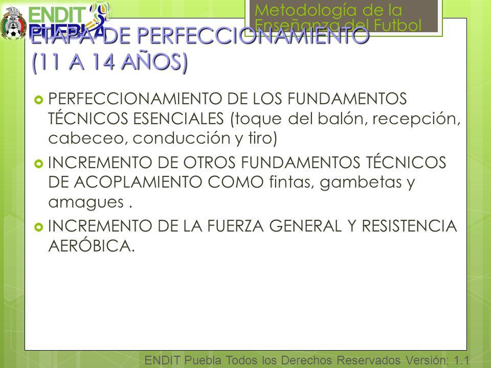 Metodología de la Enseñanza del Futbol ENDIT Puebla Todos los Derechos Reservados Versión: 1.1 ETAPA DE PERFECCIONAMIENTO (11 A 14 AÑOS) ETAPA DE PERFECCIONAMIENTO (11 A 14 AÑOS) PERFECCIONAMIENTO DE LOS FUNDAMENTOS TÉCNICOS ESENCIALES (toque del balón, recepción, cabeceo, conducción y tiro) INCREMENTO DE OTROS FUNDAMENTOS TÉCNICOS DE ACOPLAMIENTO COMO fintas, gambetas y amagues.